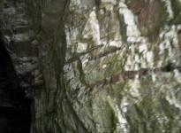 Peschici Gargano giro delle grotte 162