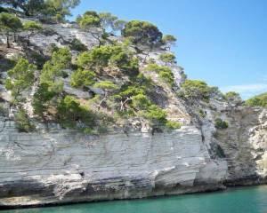 Peschici Gargano giro delle grotte 37